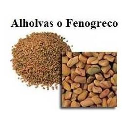 ALHOLVAS - FENOGRECO 100GR