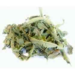 Te hierba luisa infusion comprar precio herbolariomalvarosa.com